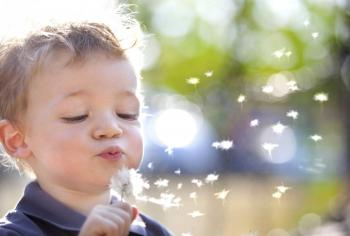 White little boy blowing on a dandelion clock