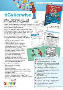 bCyberwise flyer