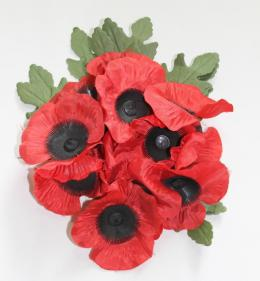 Poppies to commemorate the foundlings who served in WW1