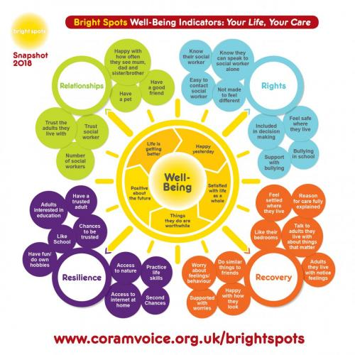Bright Spots wellbeing indicators